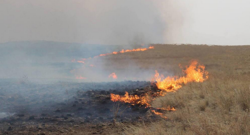 Хөвсгөл аймаг түймрийн нэн аюултай зэрэгт байна